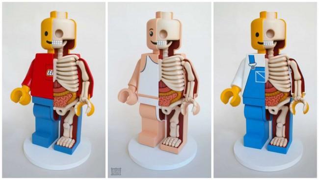 Siamo abituati a pensare alla nostra schiena e più in generale al nostro corpo, come ad un insieme di pezzi separati tra di loro!